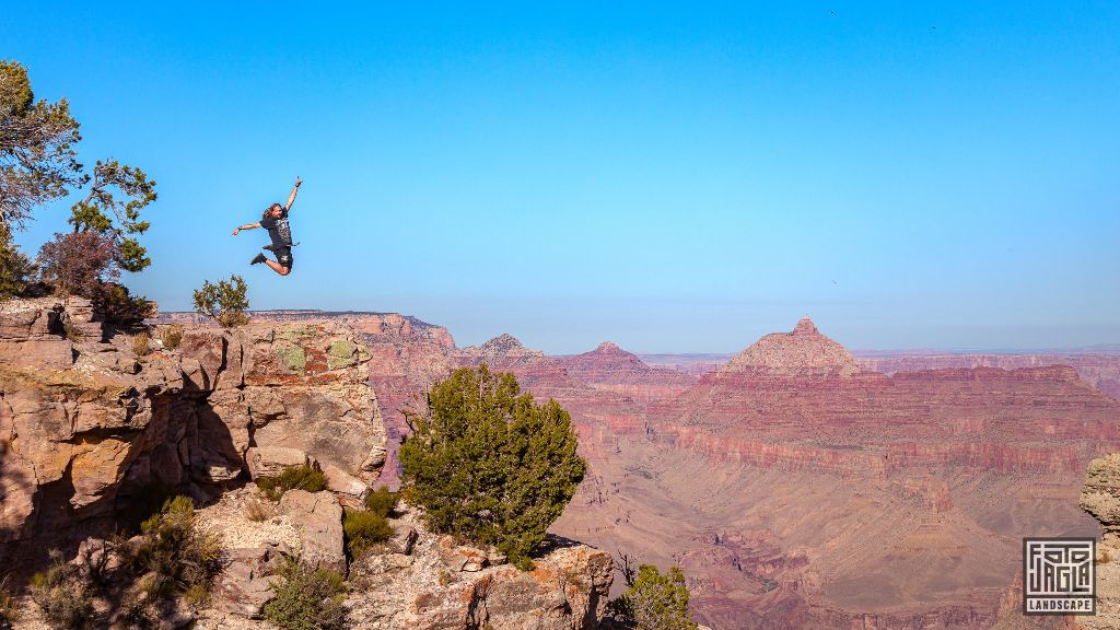 Duck On A Rock Viewpoint in Grand Canyon Village Arizona, USA 2019
