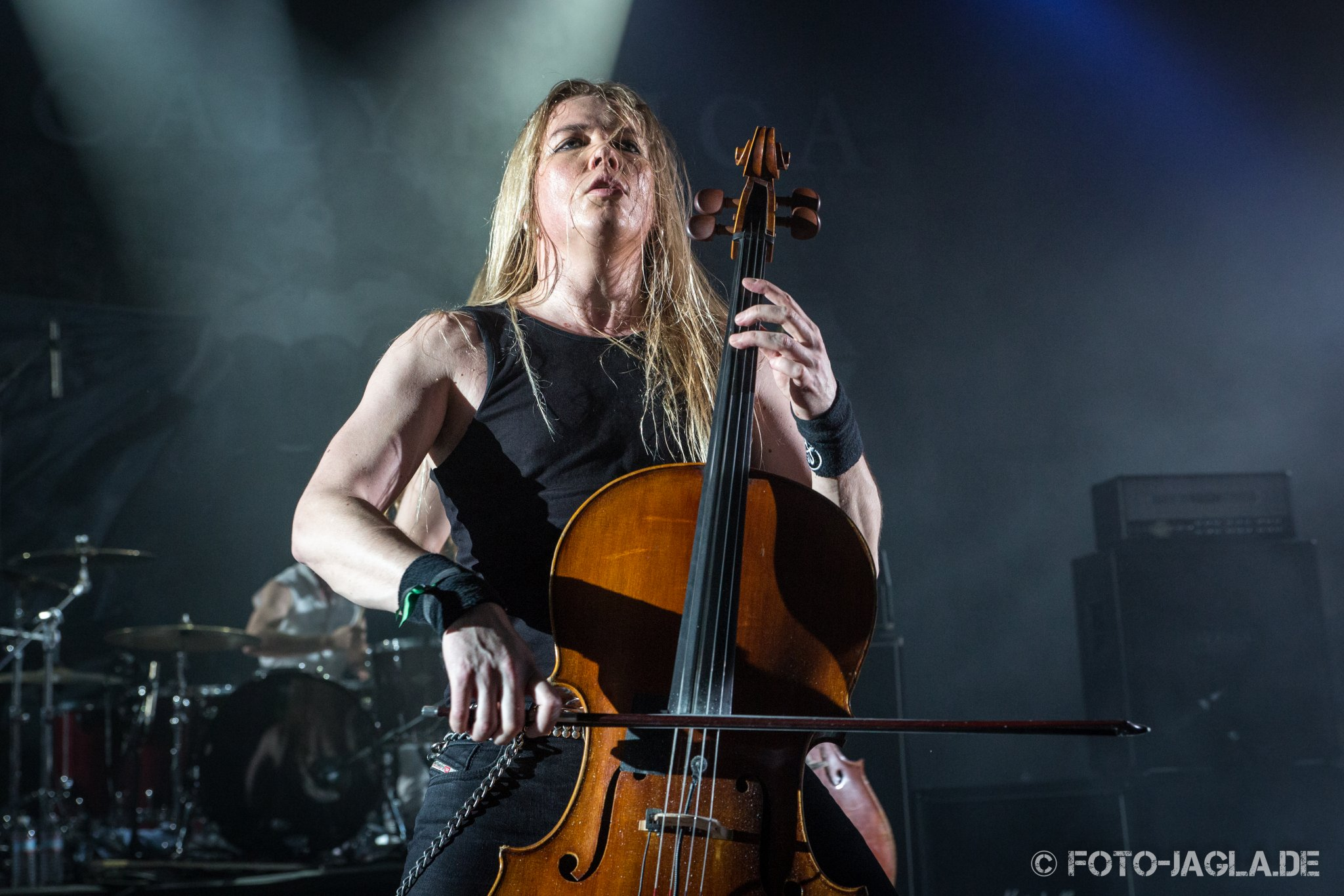 70000 Tons of Metal 2015 ::. Apocalyptica