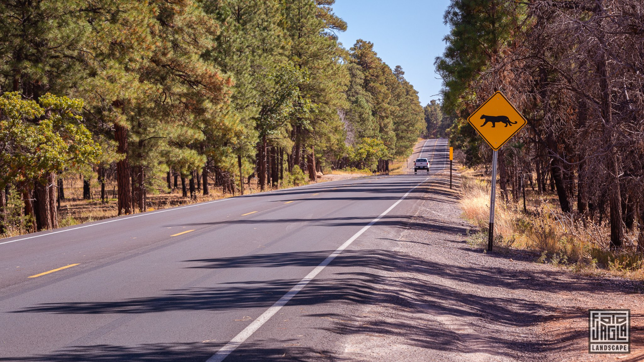 Desert View Drive in Grand Canyon Village Arizona, USA 2019