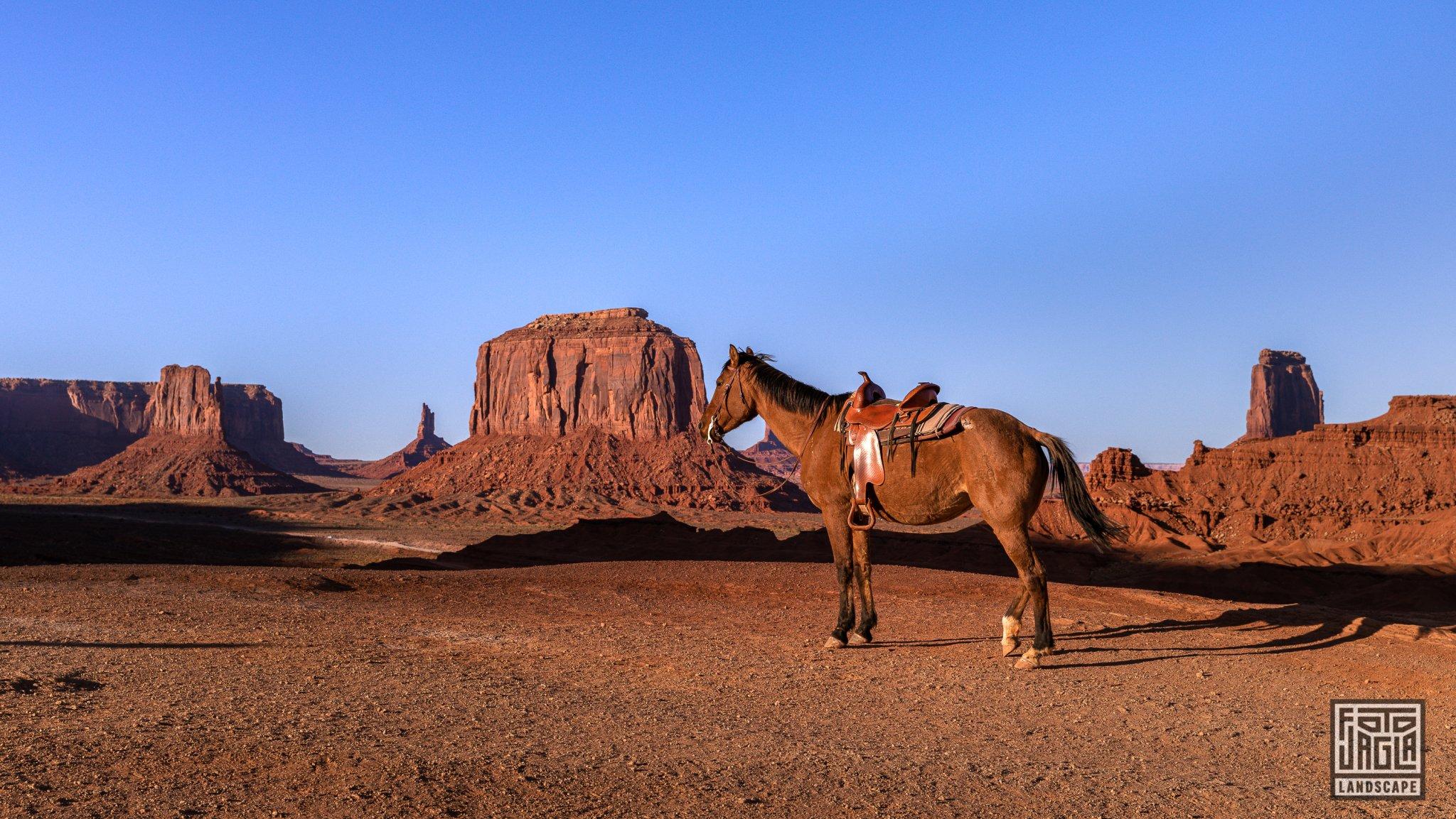 Horse at Monument Valley Arizona, USA 2019