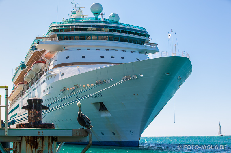 70000 Tons of Metal 2014 - Majesty of the Seas in Key West