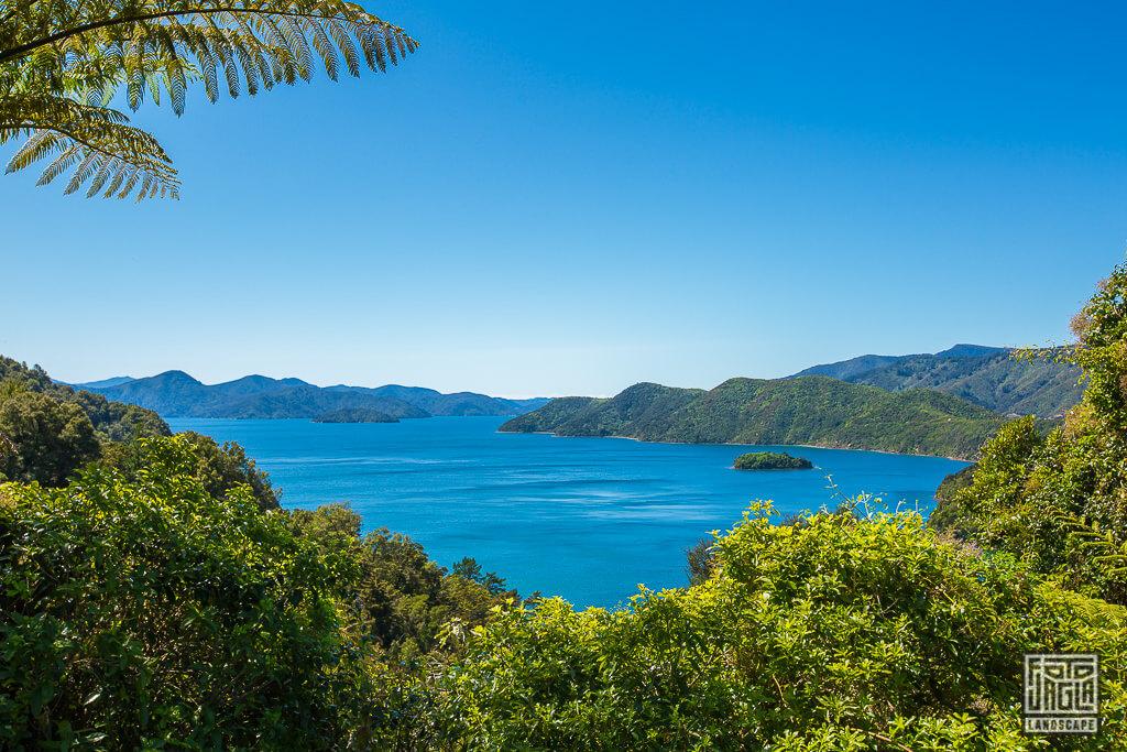 Neuseeland Südinsel - Aussicht auf die Fährstraße in Picton bei Canvastown