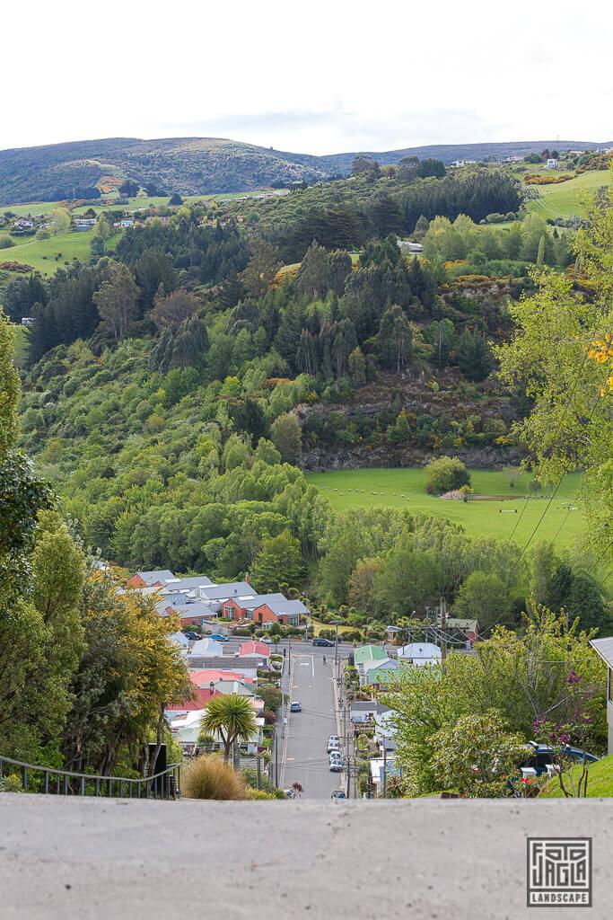 Baldwin Street in Dunedin - Die steilste Straße der Welt in Neuseeland