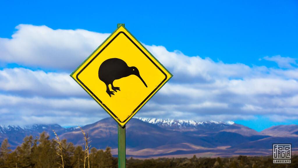 Achtung Kiwi Verkehrsschild in Neuseeland