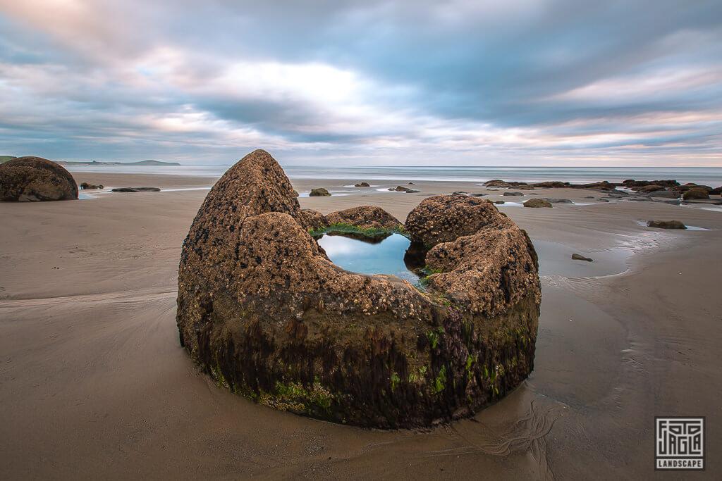 Moeraki Boulders - Runde Steine am Strand von Otago am Koekohe Beach in Neuseeland bei Sonnenaufgang