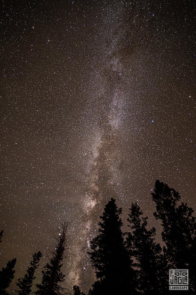 Milchstraße und Sternenhimmel - Blick in die Galaxie vom Rainbow Point im Bryce Canyon Nationalpark in Utah