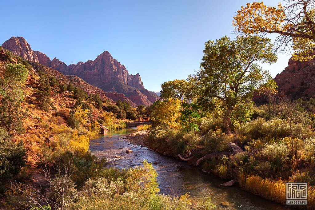 Herbst am Zion National Park - Blick auf den Virgin River in der Nähe der Junction Bridge in Utah