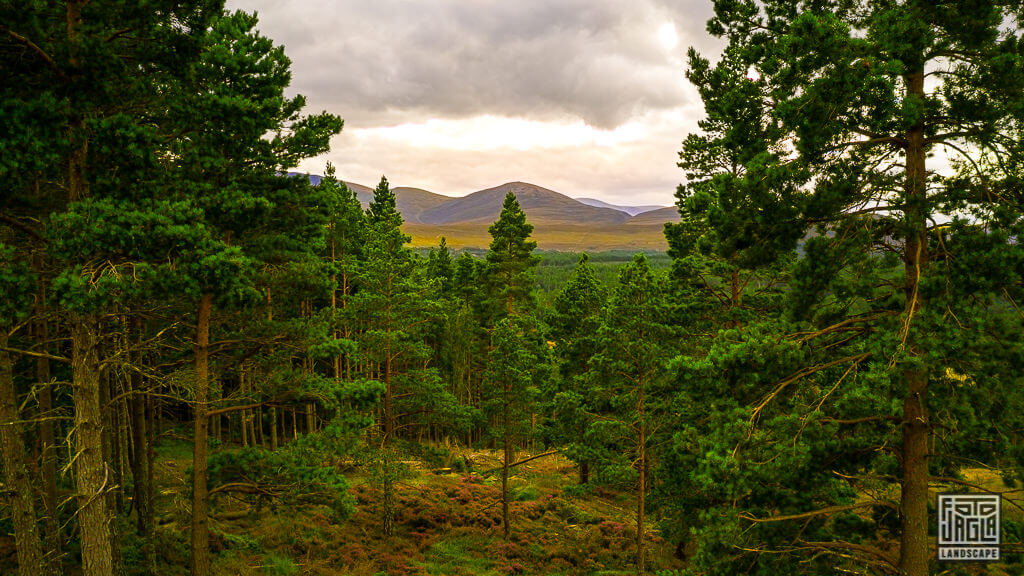Cairngorms National Park in Schottland